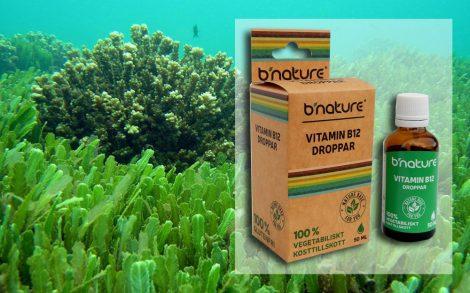 B12 vitamin Dropps