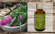Milk Thistle and Stinging-Nettle Drops
