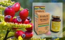 Coenzyme Q10 Capsules 120 mg